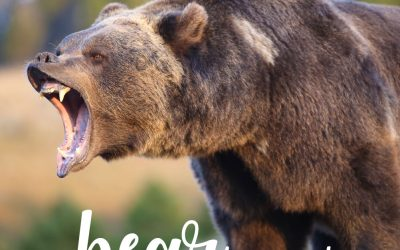 Bear in mind… You can communicate directly with your audience.